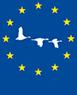 Logo-Eurosite-2019