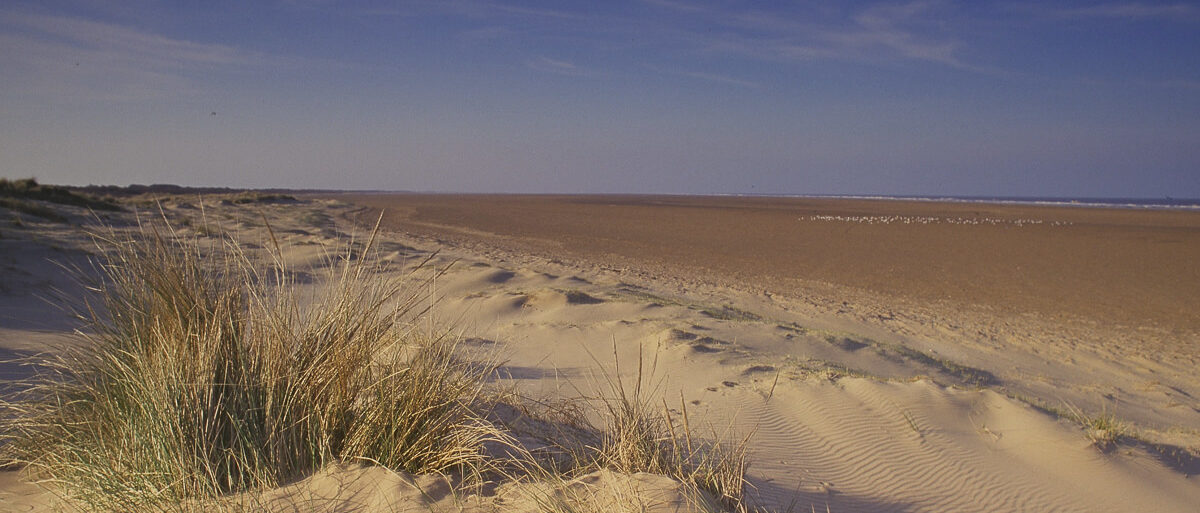 Sand dunes - Copyright Natural England Paul Glendell